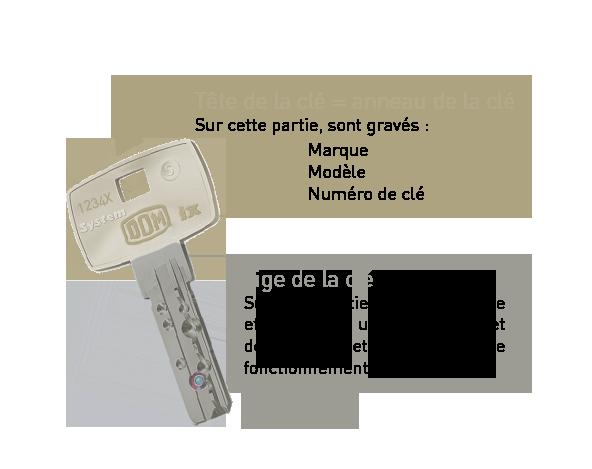 Structure de clé : anneau et tige de la clé. Schéma